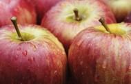 Польша увеличила поставку яблок в Украину