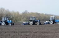 В Украине увеличены посевы подсолнечника и сои