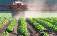 Украинские продукты могут не попасть в ЕС